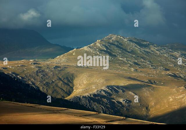 Berge in der Overberg Region in der Nähe von Villiersdorp, Western Cape, Südafrika Stockbild