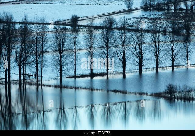 Überschwemmungen nr Muchelney, Somerset, England, UK Stockbild
