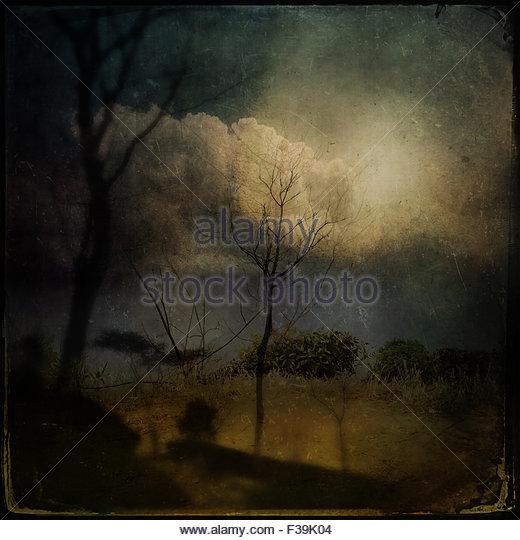 Landschaft mit Bäumen und Wolken Stockbild