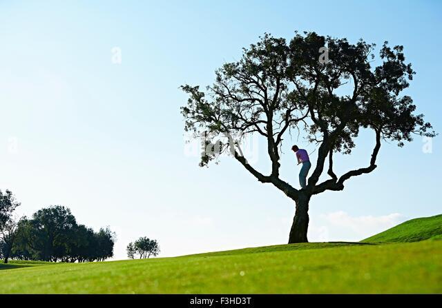 Niedrigen Winkel Ansicht der Golfer stehen im Baum Swingens Golf club Stockbild