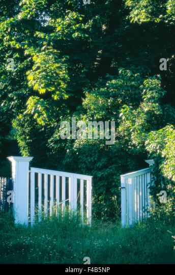 Katalog 2 Farbe Bild Zaun Gartentor Grasgrün Laub Sommer schwedischen Katalog 3 dicht bewaldete Baum vertikal - Stock-Bilder
