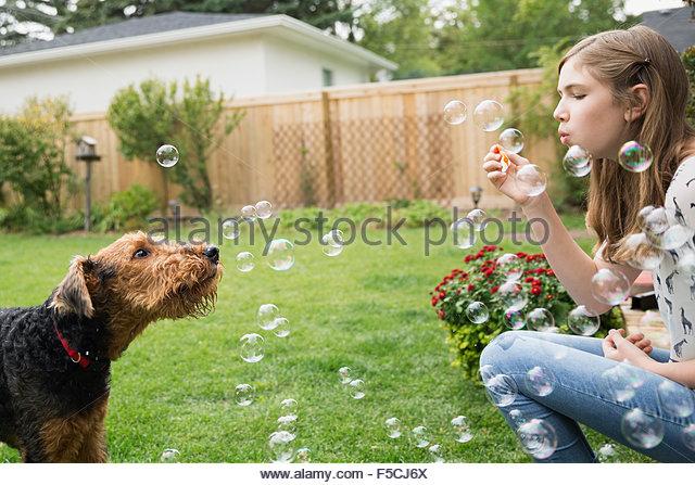 Neugierige Hund beobachten Mädchen bläst Seifenblasen im Hinterhof Stockbild