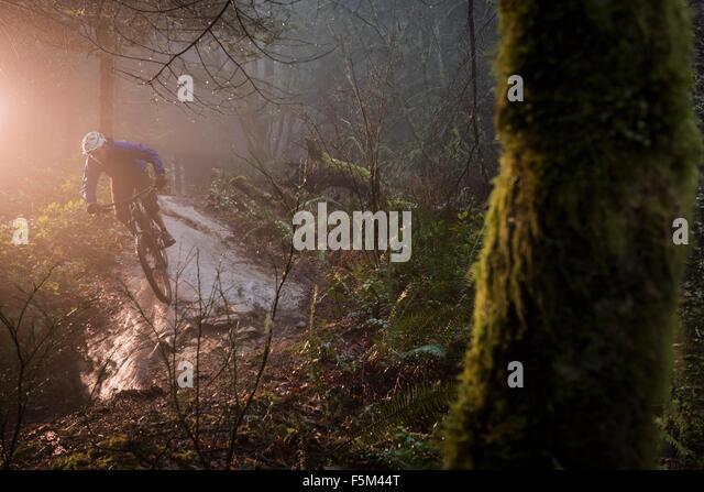 Junge männliche Mountainbiker fahren über Wald rock Stockbild