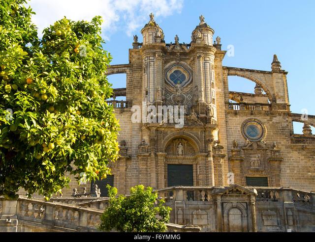 Domkirche in Jerez De La Frontera, Provinz Cadiz, Spanien Stockbild