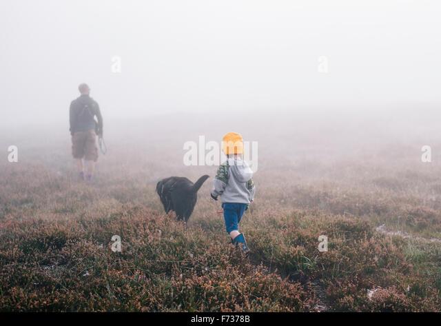 Ein Erwachsener und ein Kind mit einem Hund zu Fuß durch die Heide im Herbst Nebel. Stockbild