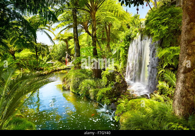 Monte Palace Tropical Garden (japanischer Garten) - Funchal, Monte, die Insel Madeira, Portugal Stockbild