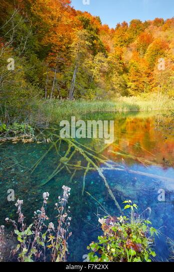 Nationalpark Plitvicer Seen, Kroatien, Europa Stockbild