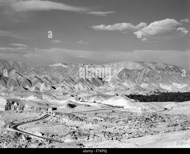 Eine Palmeraie füllt die Landschaft in der Region Gafsa Südtunesiens in der Nähe von Chitri. Tunesien. Stockbild