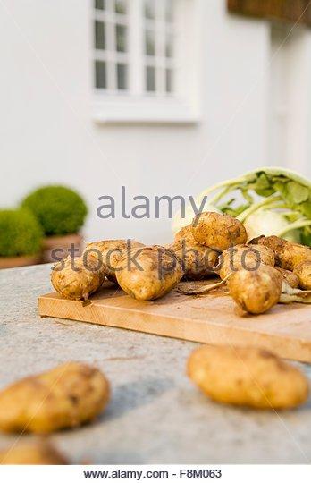 Neue Kartoffeln und Kohlrabi auf einem Gartentisch Stockbild