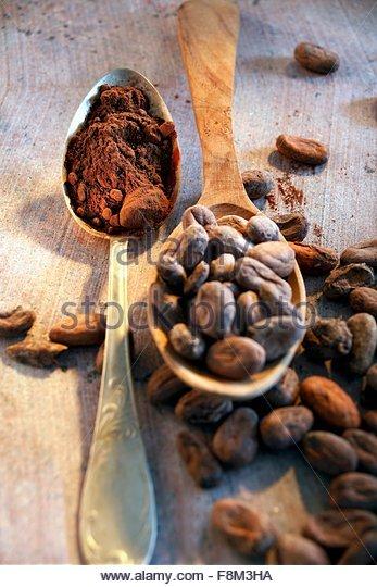 Stillleben mit geröstete Kakaobohnen und Kakao im Löffel Stockbild
