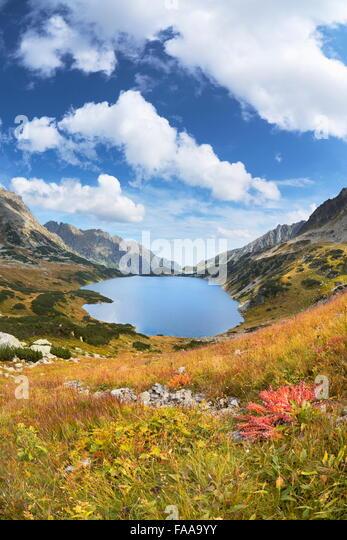 Tatra-Gebirge, fünf-Seen-Tal, Polen Stockbild