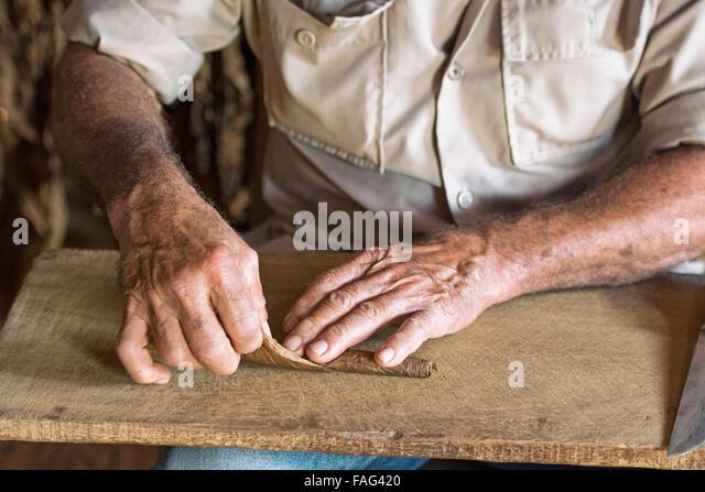 Kuba-Zigarre Rollen, kubanische Hand gerollte Zigarre Maker Stockbild
