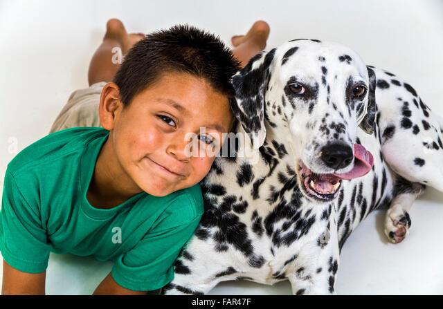Jungen mexikanischen Amerikaner spanischer junger Mann, grünes T-Shirt Dalmatiner Kind spielen spielt Hund Stockbild
