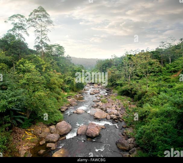 Bewölkung und Fluss im Tropenwald Stockbild
