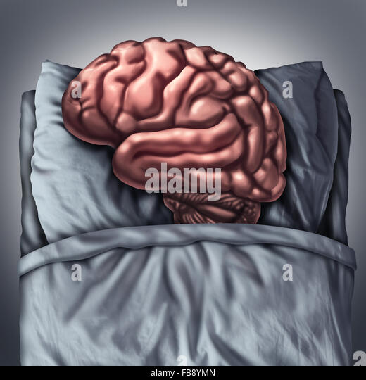 Gehirn Schlaf Gesundheits- und medizinisches Konzept für Vorteile denken Orgel durch schlafen auf einem Kissen Stockbild