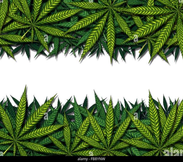 Marihuana Bordürenmuster auf einem weißen Hintergrund als Symbol für medizinische Pot oder medizinische Stockbild