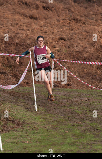 Annual Knole Run Sevenoaks School Kreuz Land Jugend Meile laufen in Teams harte Langstrecken-Rennen Stockbild