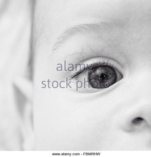 Zugeschnittenes Bild des menschlichen Auges Stockbild
