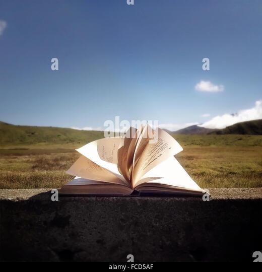 Offenes Buch gegen blauen Himmel und Landschaft Stockbild