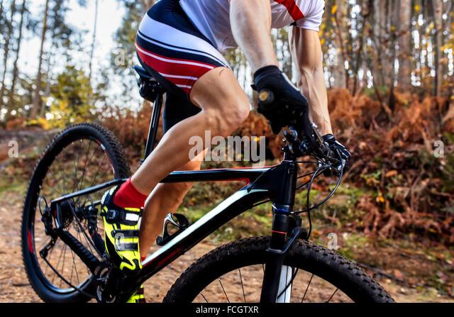 Mountainbiker fahren in den Wald-Nahaufnahme Stockbild