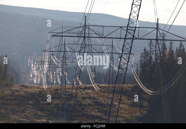 Elektrokabel, Storlien, Jämtland, Schweden Stockbild