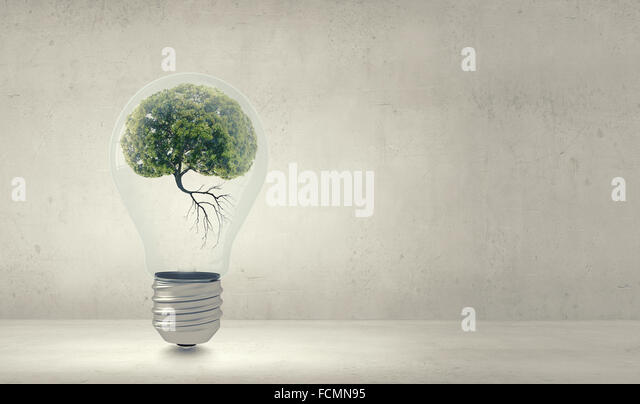 Glühbirne mit Baum im Inneren. Ökologie-Konzept Stockbild