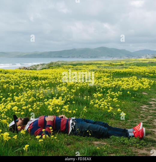 Ein Mann liegt in einem Feld von gelben Blüten an der Küste von Big Sur, Kalifornien. Stockbild