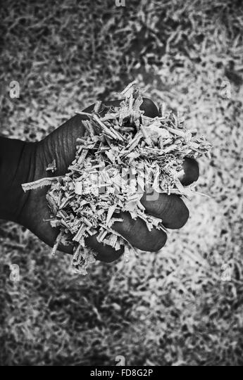 Bild des Mannes hält hölzerne Späne beschnitten Stockbild