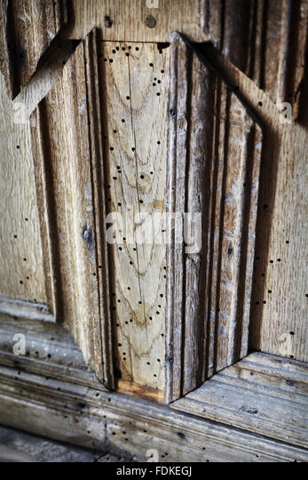 woodworm damage stockfotos woodworm damage bilder seite 2 alamy. Black Bedroom Furniture Sets. Home Design Ideas