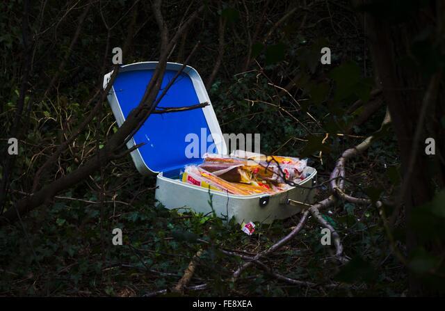 Verlassene Koffer auf Landschaft Stockbild