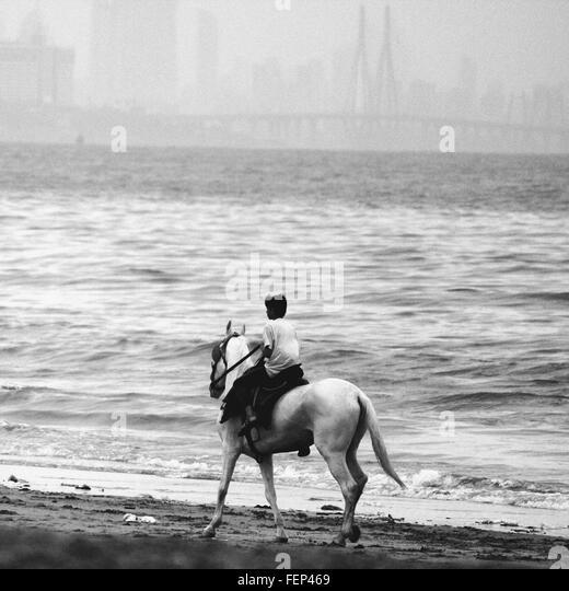 Person Reitpferd am Strand Stockbild