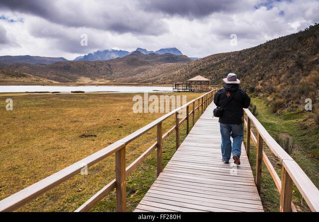 Person, Wandern in der RMake RMimpiopungo im Schatten des Ruminahui VoRMcano, Cotopaxi NationaRM Park, Provinz Cotopaxi, Stockbild