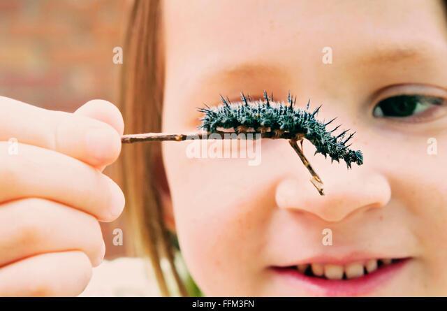 Mädchen hält Pfau Raupe Stockbild