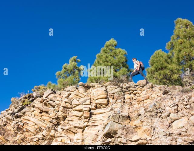 Weibliche Wanderer im Pinienwald in Bergen auf Gran Canaria, Kanarische Inseln, Spanien. Stockbild