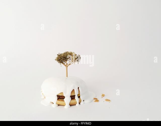 Pflanze der Burger auf weißen Hintergrund Stockbild