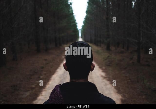 Wanderer auf der Suche im Wald Stockbild