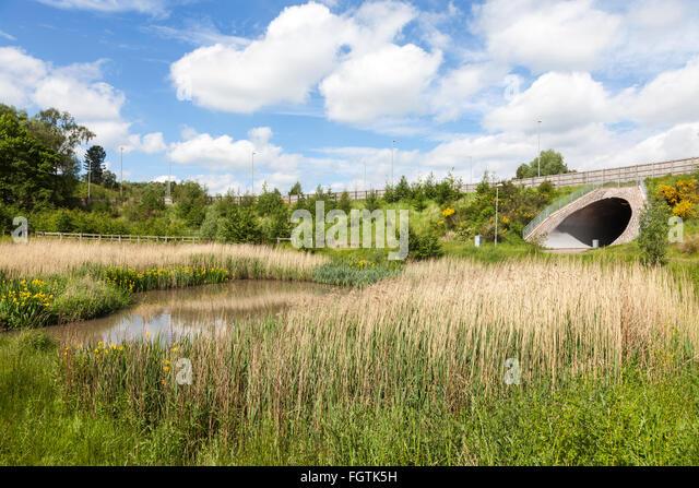 Landschaftsbau, wurde eine Unterführung und ausgleichende See gebaut, als eine neue Umgehungsstraße am Stockbild