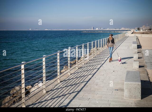 Voller Länge Vorderansicht junge Frau zu Fuß Hund am Meer wegschauen Stockbild
