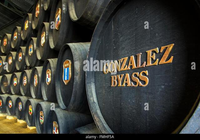 Gonzales Byass Weingut, Jerez De La Frontera, Andalusien, Spanien Stockbild