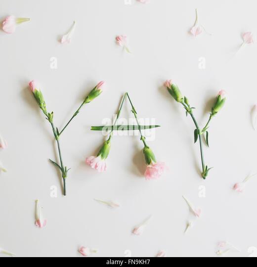 YAY ausgeschrieben mit Nelken Stockbild