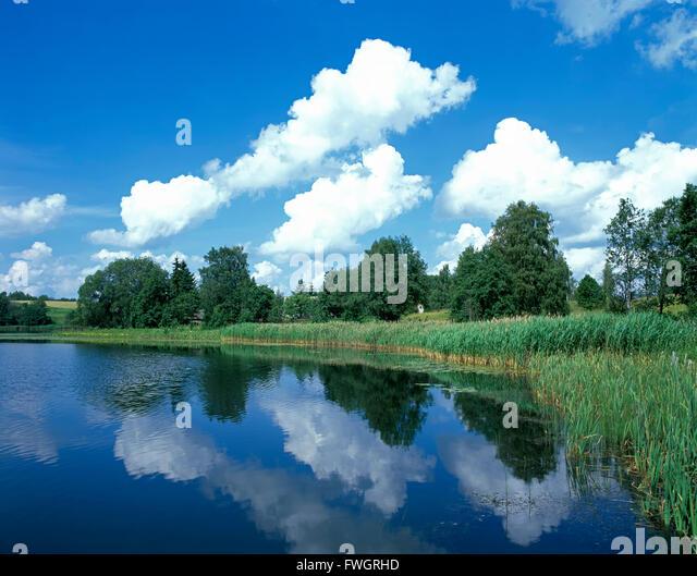See Pühajärv in Otepää in Estland, in der Nähe von Europa - Stock-Bilder