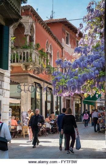 Glyzinien überhängenden einer Venedig-Straße Stockbild