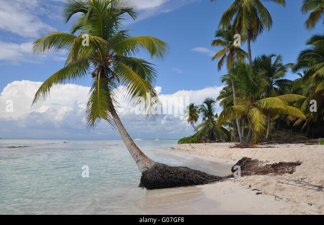 Karibik-Insel Stockbild