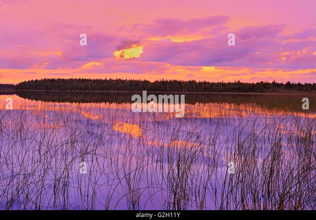 Sonnenuntergang am See Carey in Nordontario Hearst Ontario Kanada Stockbild