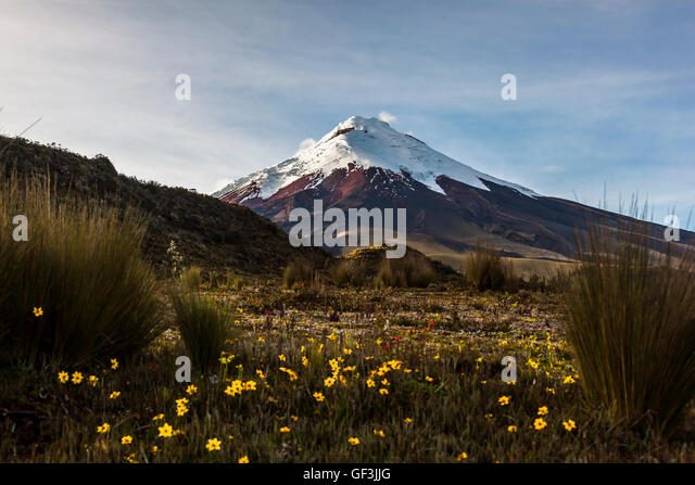 Cotopaxi Vulkan in der Morgendämmerung, Annäherung an seinen hängen, zu Fuß durch die Wildnis Stockbild