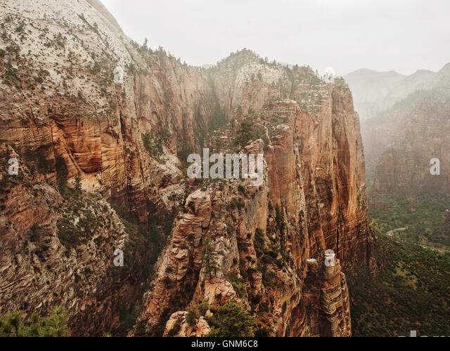 Ein Blick in Zion National Park in Utah Stockbild