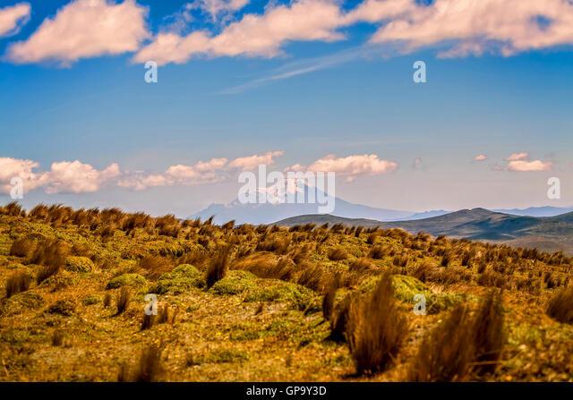 Nationalpark Cotopaxi Landschaft, Ecuador, Südamerika Stockbild