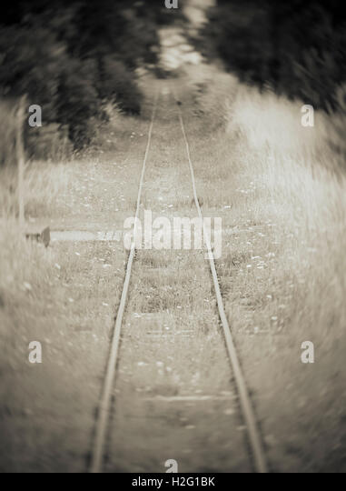 Alte verlassene Bahnstrecke und Wald. Verträumt und geheimnisvolle Natur Einstellung mit Railroad tracks in Stockbild