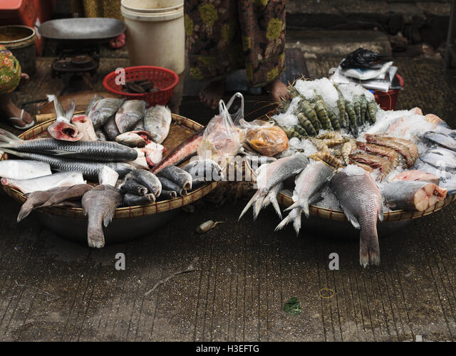 Frischen Fänge verkauft auf dem Fischmarkt in Yangon, Myanmar (Burma) Stockbild