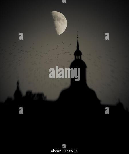 Vogelschwarm Gebäude in der Nacht mit Halbmond im Hintergrund vorbei fliegen. Dunkel, launisch und gruseligen Stockbild